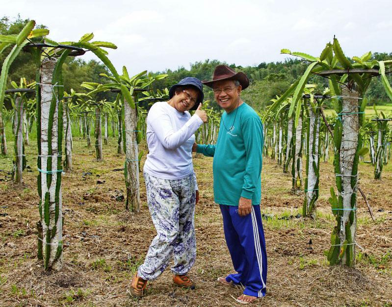 Tatay Ed & Nanay Rose's Labor of love